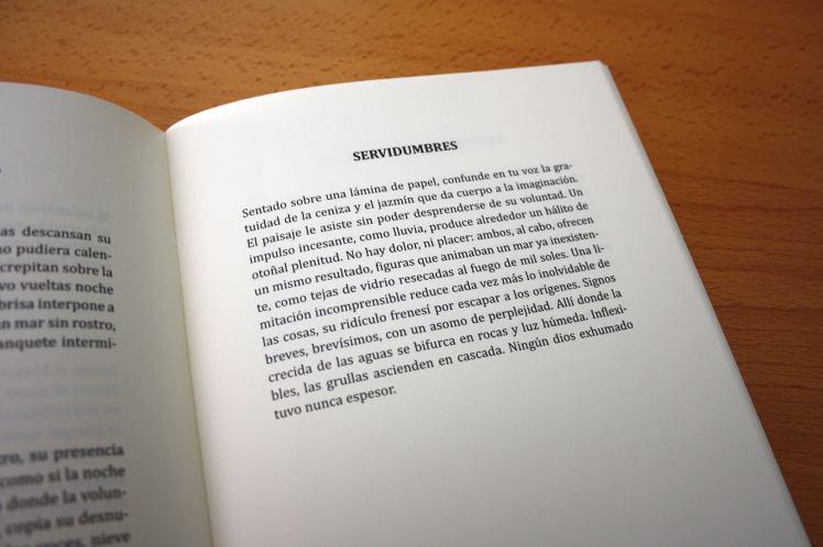 poema-servidumbre